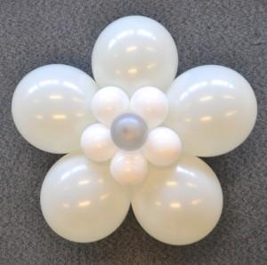 Ballonenbloemwitzilver