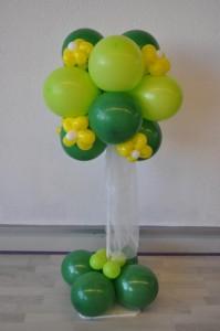 Ballonnenboom groen