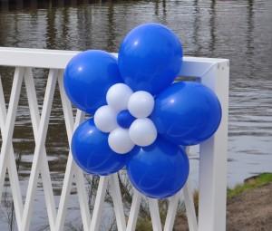 Ballonbloem blauw